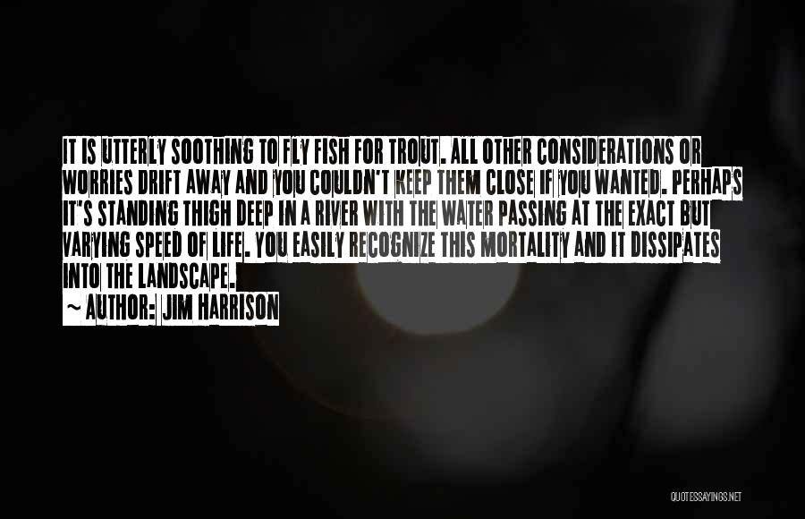 Life Water Quotes By Jim Harrison