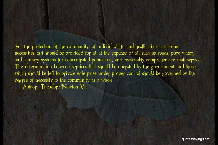 Life Water Quotes By Theodore Newton Vail