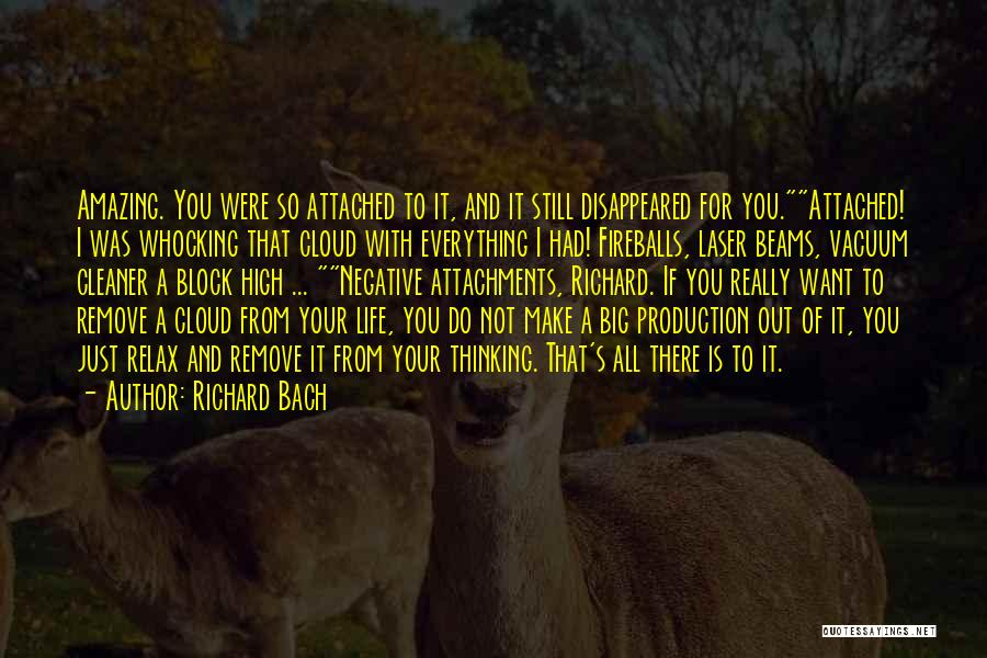 Life With You Is Amazing Quotes By Richard Bach