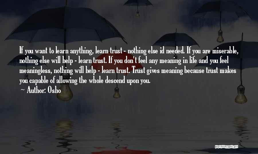 Life Without You Is Meaningless Quotes By Osho