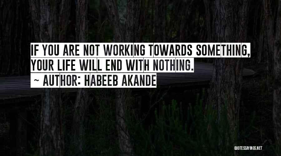 Life Working Hard Quotes By Habeeb Akande