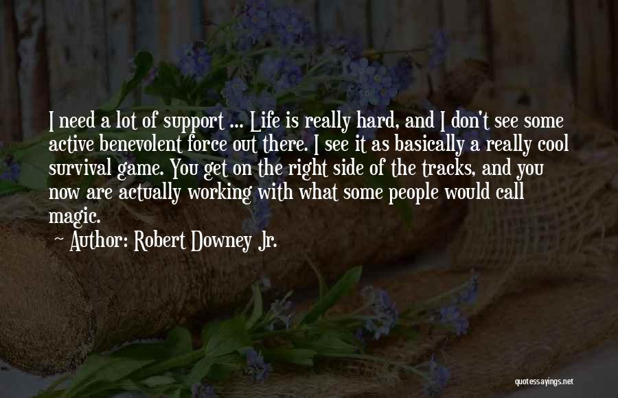 Life Working Hard Quotes By Robert Downey Jr.