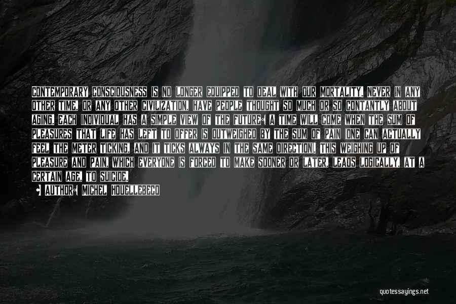 Life's Simple Pleasure Quotes By Michel Houellebecq
