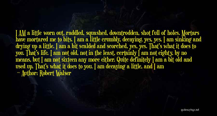 Life's What You Make It Quotes By Robert Walser