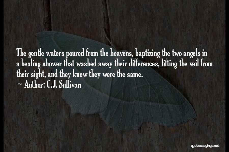 Lifting The Veil Quotes By C.J. Sullivan
