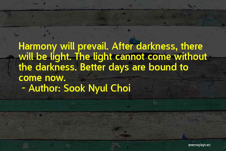Light And Darkness Quotes By Sook Nyul Choi