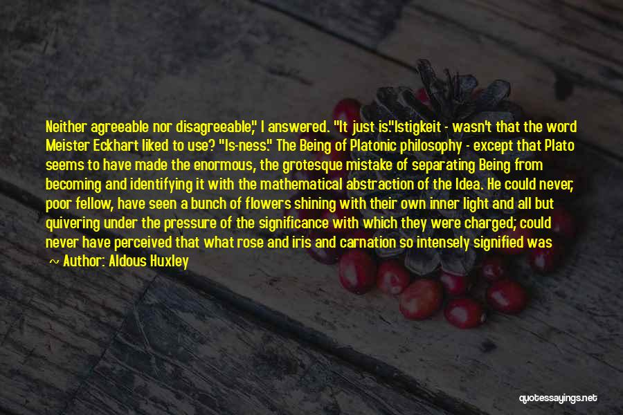 Light Being Quotes By Aldous Huxley