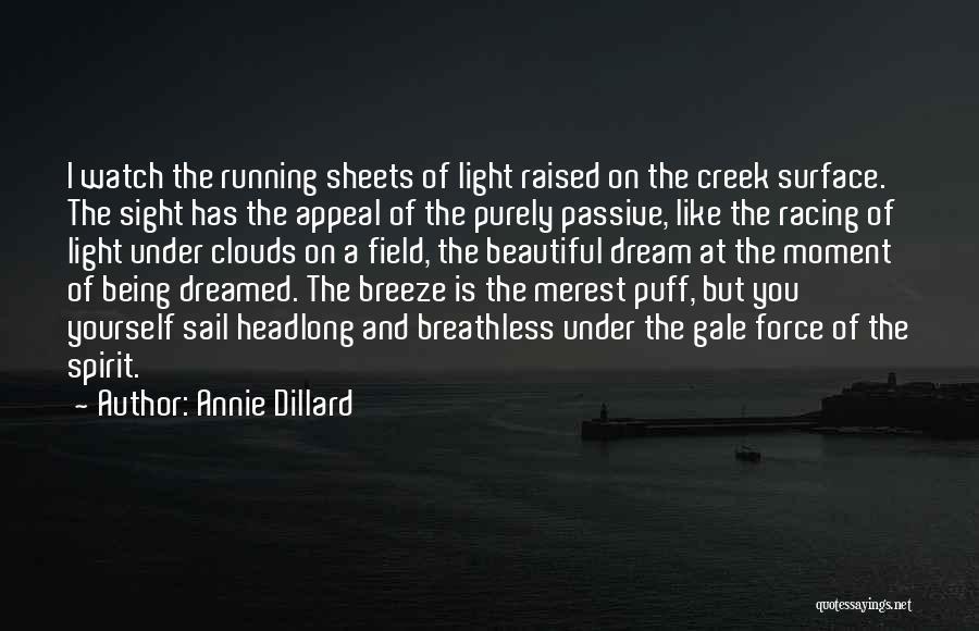Light Being Quotes By Annie Dillard