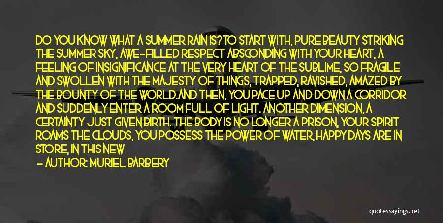 Light In The Soul Quotes By Muriel Barbery