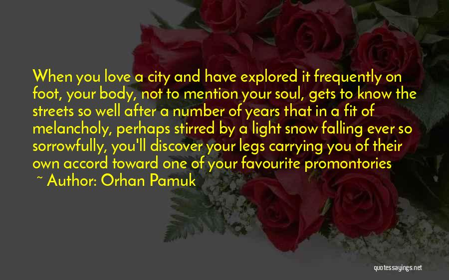 Light In The Soul Quotes By Orhan Pamuk
