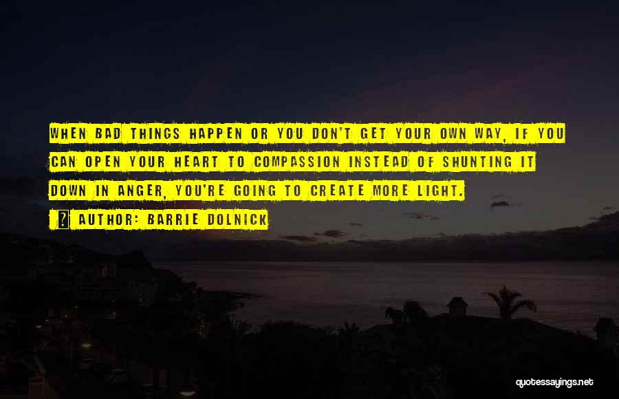 Light In Your Heart Quotes By Barrie Dolnick