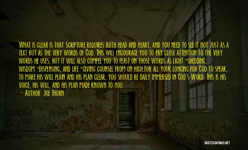 Light In Your Heart Quotes By Joe Thorn