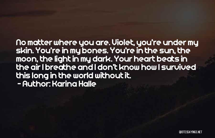 Light In Your Heart Quotes By Karina Halle