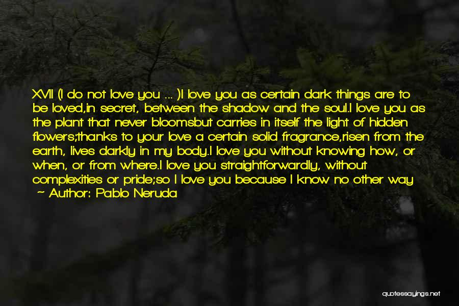 Light Of Your Soul Quotes By Pablo Neruda