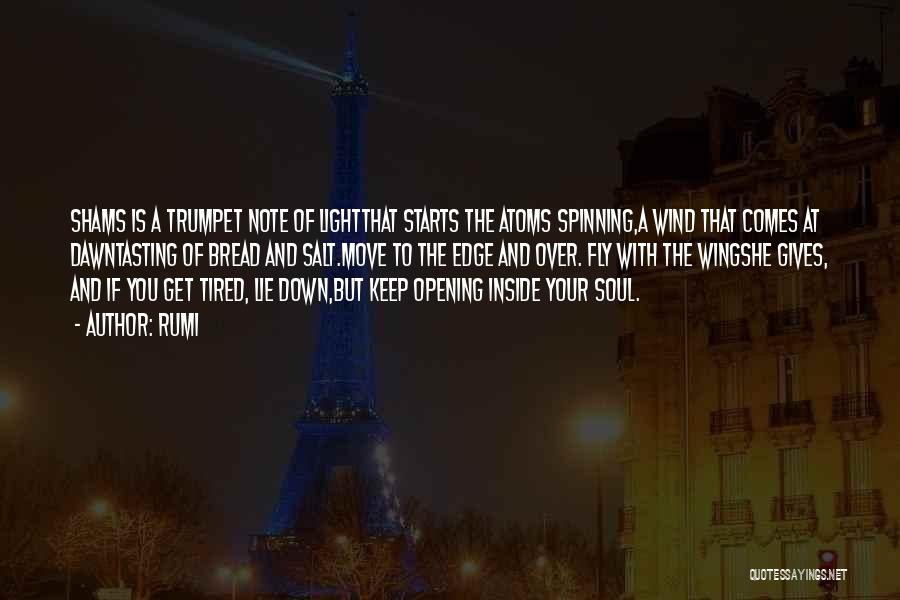 Light Of Your Soul Quotes By Rumi