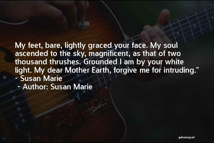 Light Of Your Soul Quotes By Susan Marie