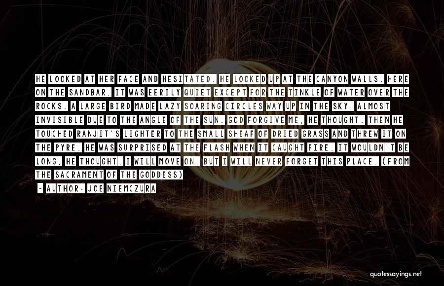 Lighter Quotes By Joe Niemczura