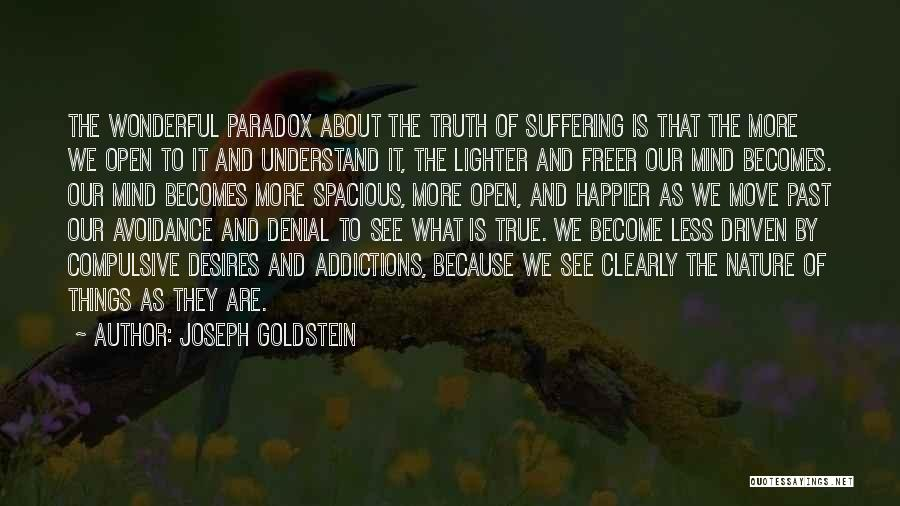 Lighter Quotes By Joseph Goldstein