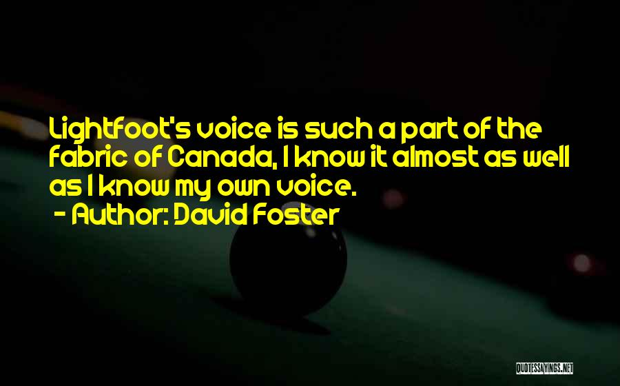 Lightfoot Quotes By David Foster