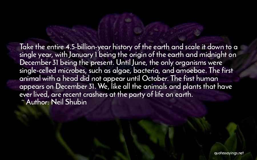 Like Being Single Quotes By Neil Shubin