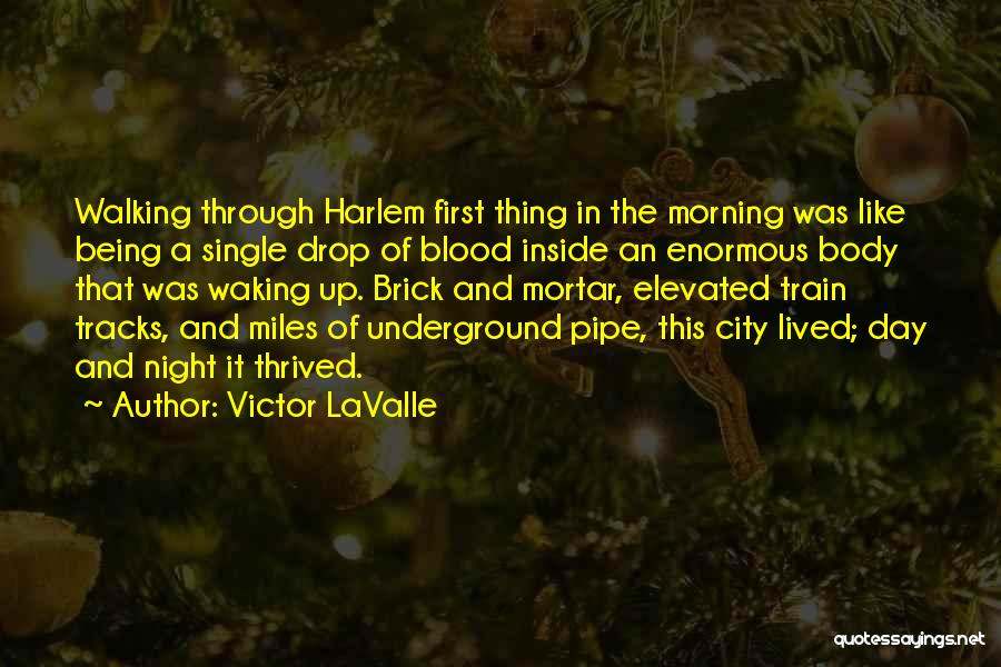 Like Being Single Quotes By Victor LaValle