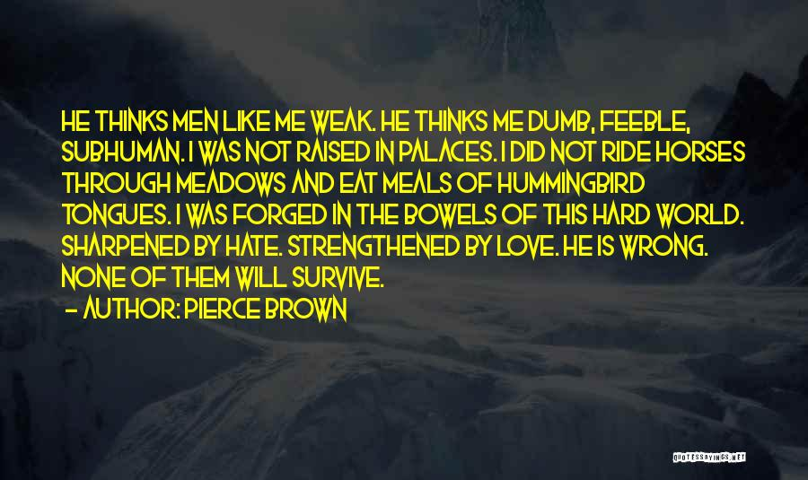 Like Me Hate Me Quotes By Pierce Brown