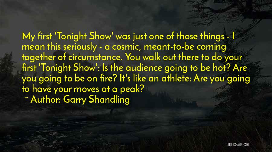 Like Seriously Quotes By Garry Shandling
