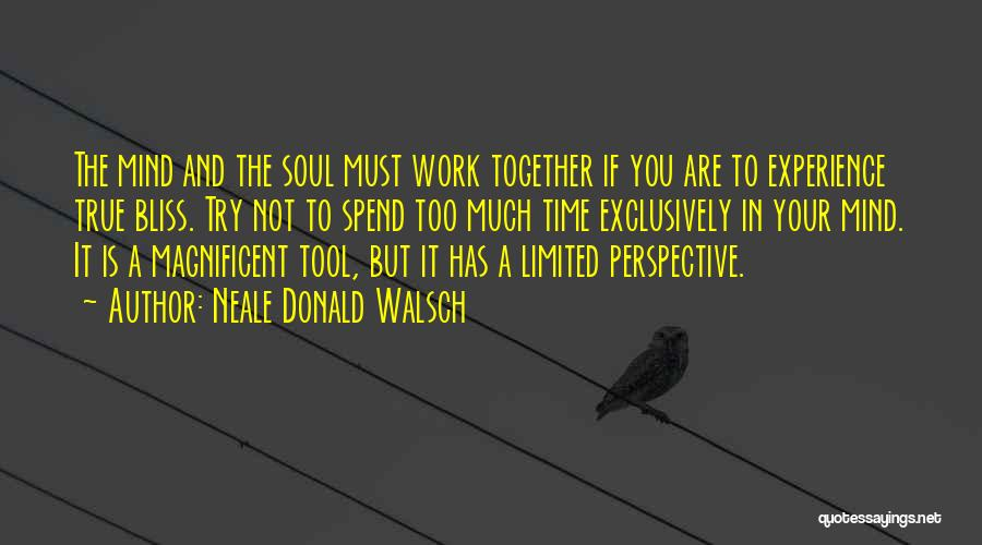 Limited Perspective Quotes By Neale Donald Walsch