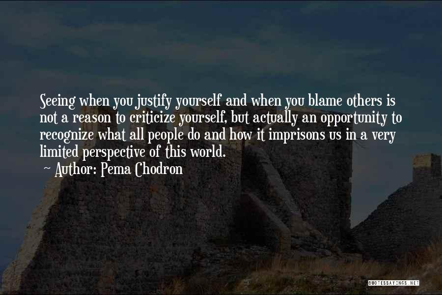 Limited Perspective Quotes By Pema Chodron