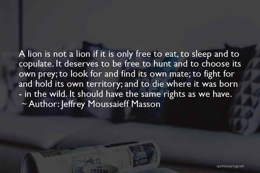 Lion Prey Quotes By Jeffrey Moussaieff Masson