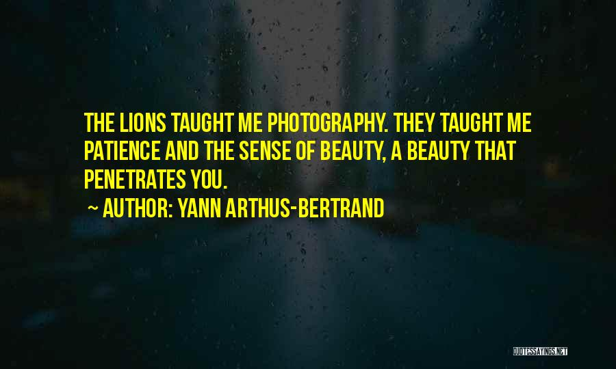 Lions And Beauty Quotes By Yann Arthus-Bertrand