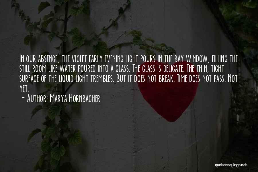 Liquid Quotes By Marya Hornbacher