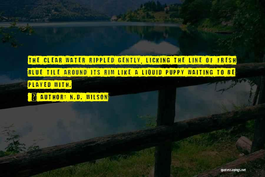 Liquid Quotes By N.D. Wilson