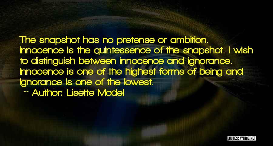 Lisette Model Quotes 2091046