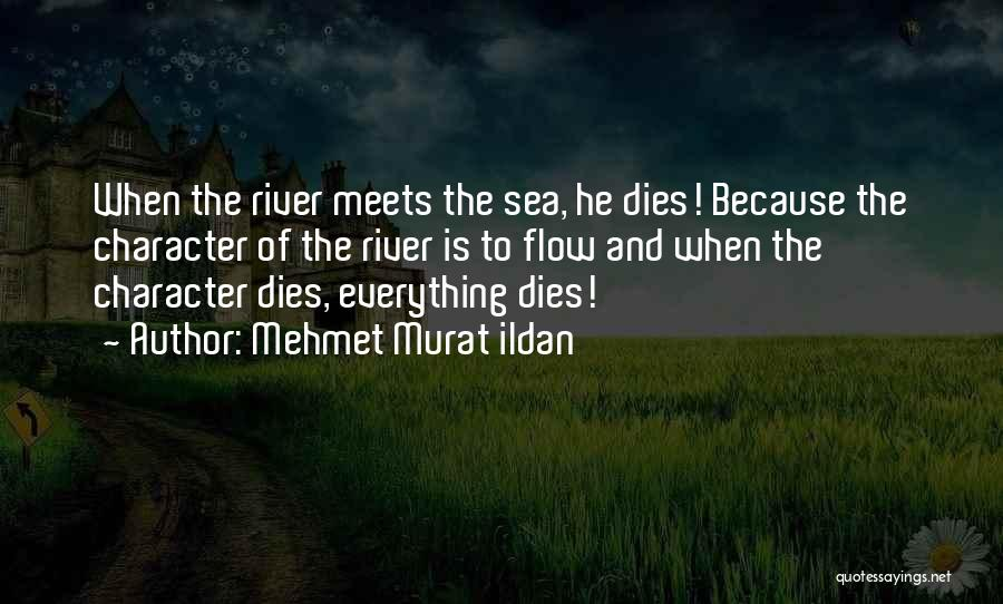 Literature And Characters Quotes By Mehmet Murat Ildan