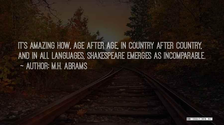 Literature And Culture Quotes By M.H. Abrams