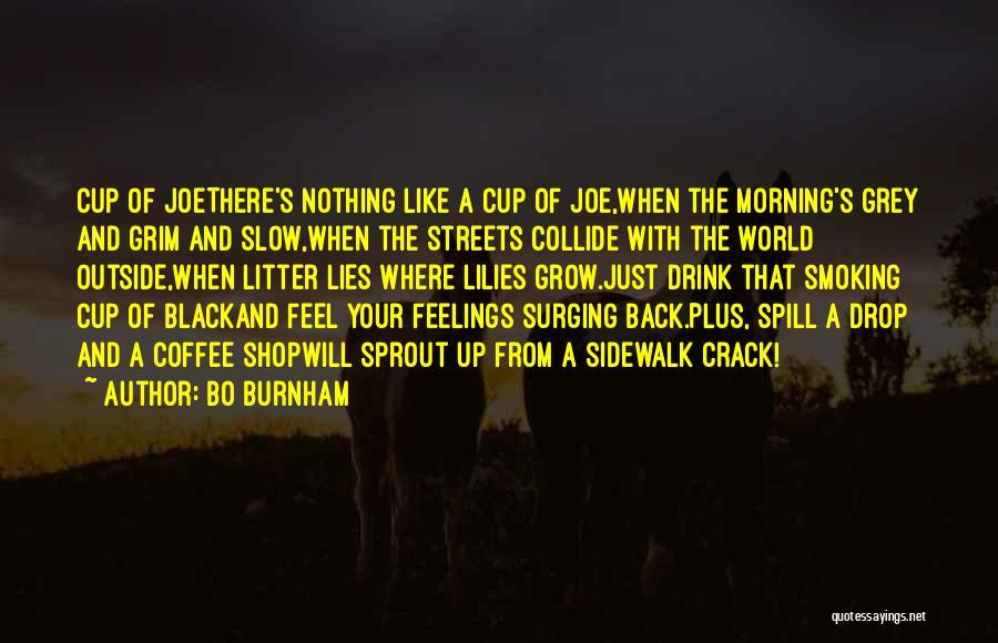 Litter Quotes By Bo Burnham