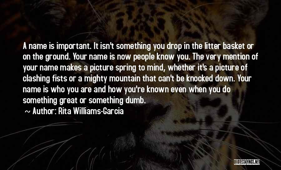 Litter Quotes By Rita Williams-Garcia