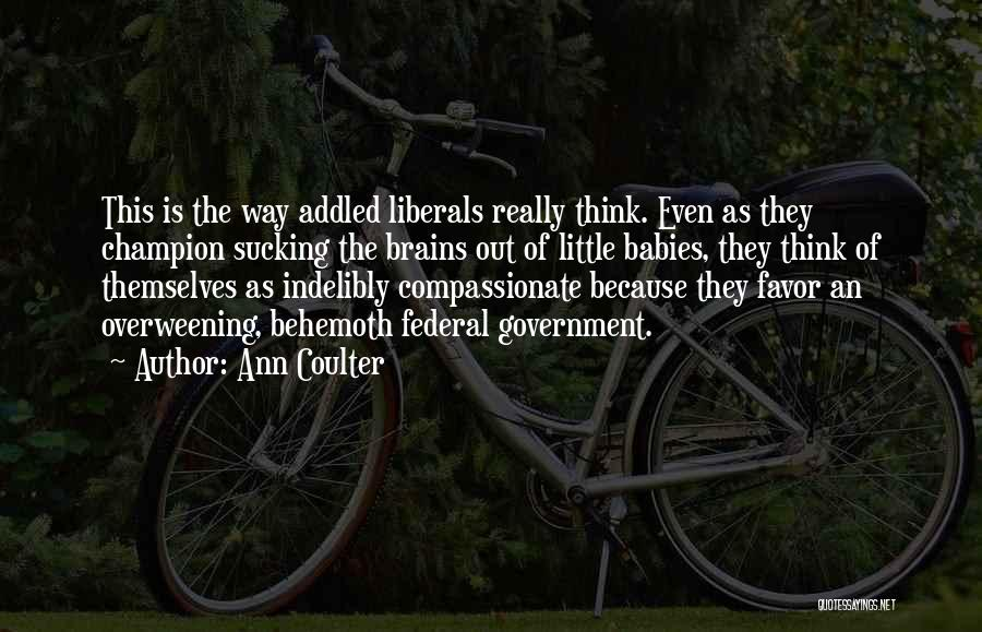 Little Brains Quotes By Ann Coulter