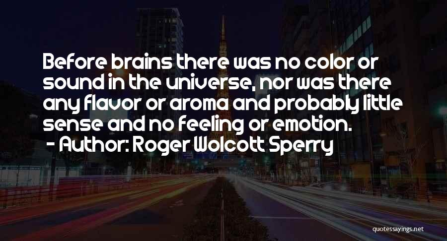 Little Brains Quotes By Roger Wolcott Sperry