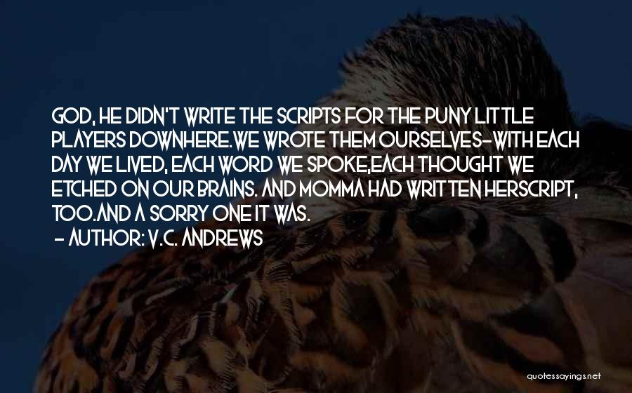 Little Brains Quotes By V.C. Andrews