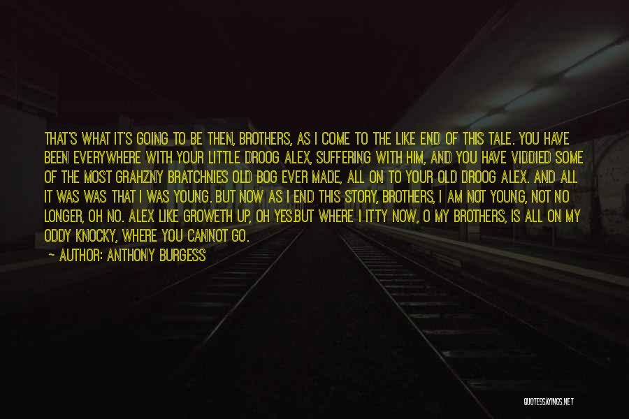 Little Brothers Quotes By Anthony Burgess
