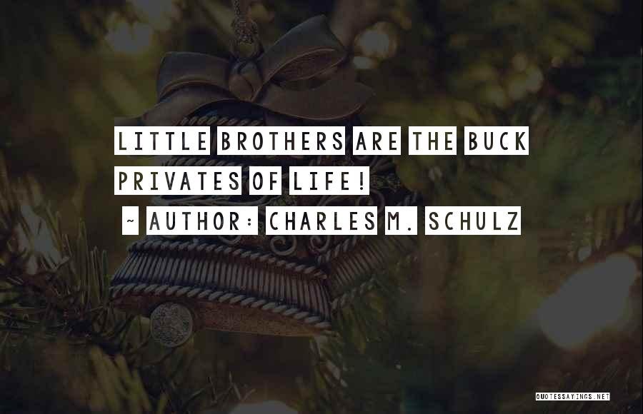 Little Brothers Quotes By Charles M. Schulz