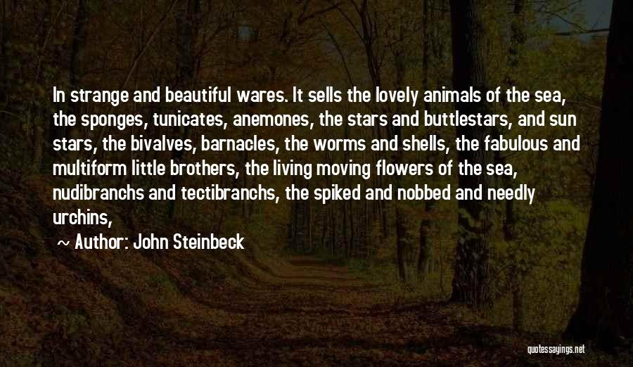 Little Brothers Quotes By John Steinbeck