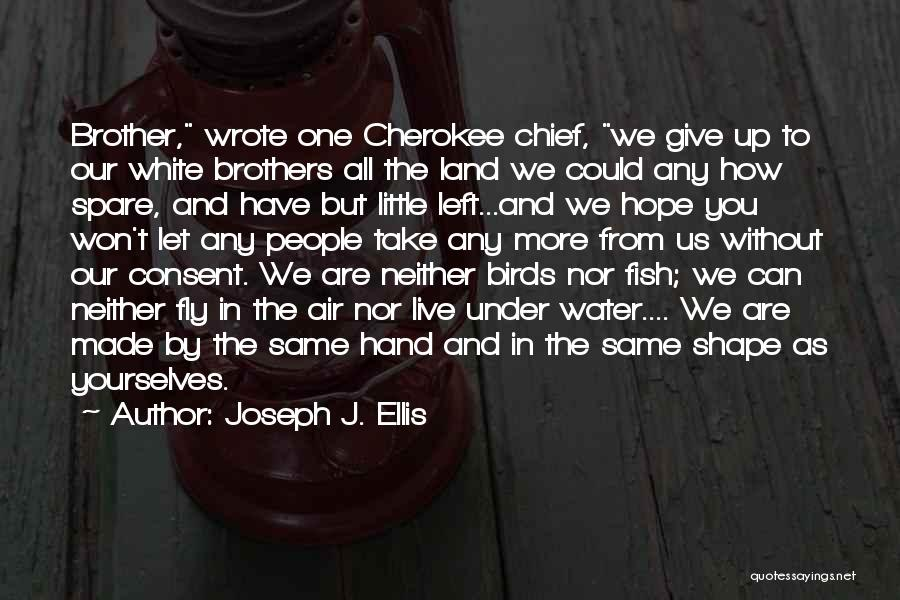 Little Brothers Quotes By Joseph J. Ellis