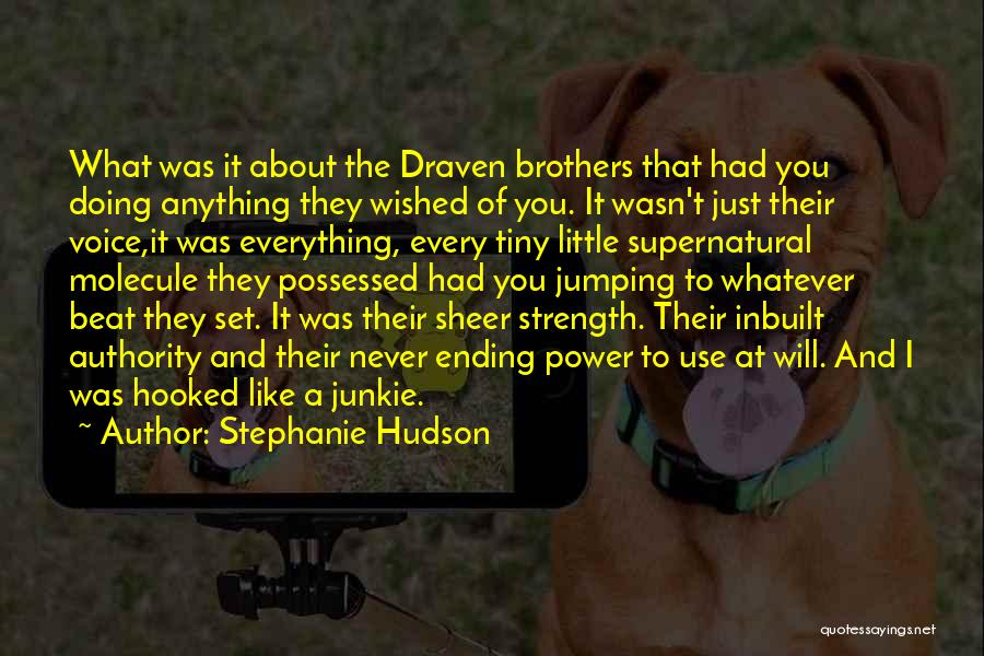 Little Brothers Quotes By Stephanie Hudson