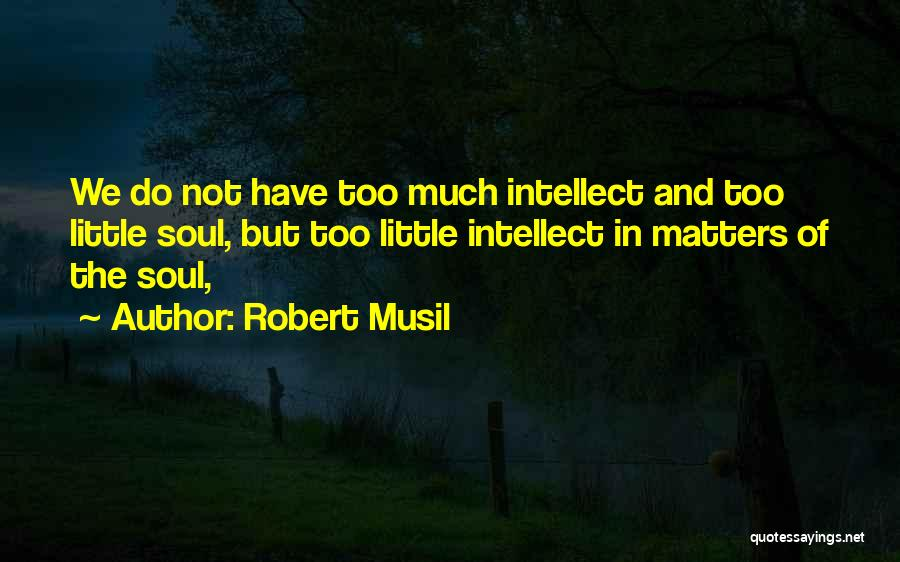 Little Things Matter Most Quotes By Robert Musil