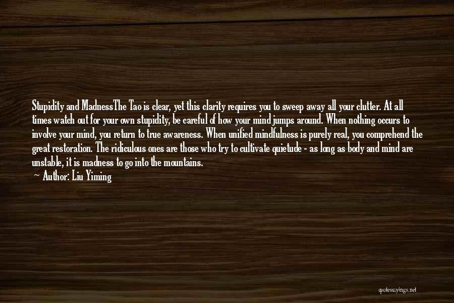 Liu Yiming Quotes 1886895
