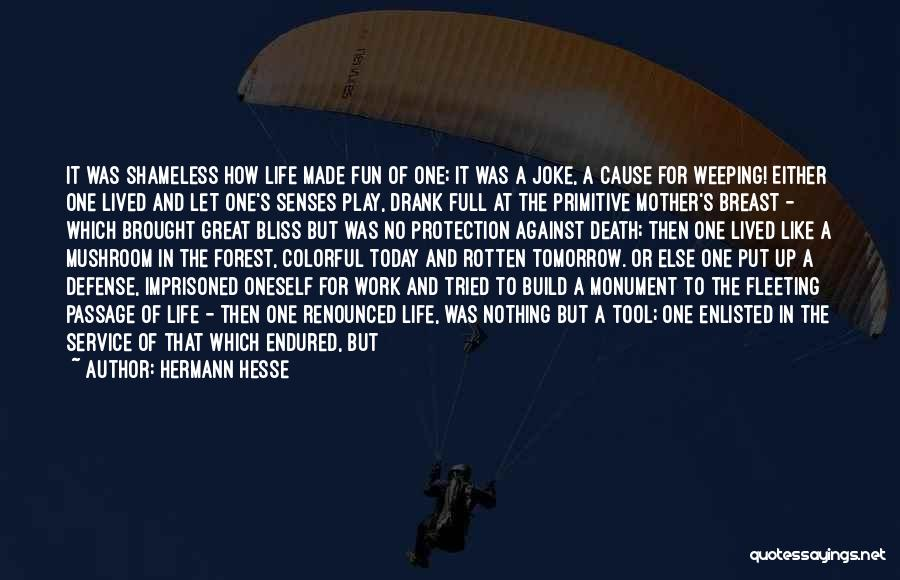 Live A Life Of Service Quotes By Hermann Hesse