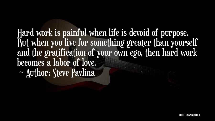 Live For Something Quotes By Steve Pavlina